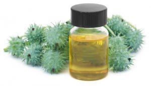 Jual Castor Oil
